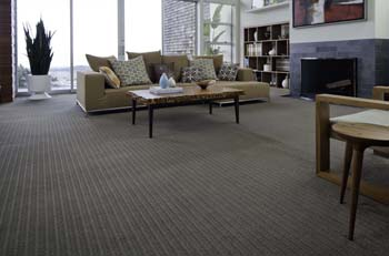 Springdale Carpets Carpeting In Springdale - How to cover carpet with flooring